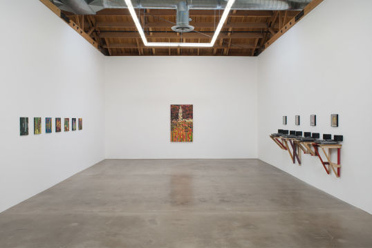 ragpicker, 2013, Installation view, Susanne Vielmetter Los Angeles Projects, Culver City, CA; Photo credit: Robert Wedemeyer