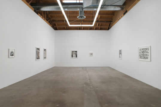 Installation view of Priapus Agonistes, 2013, Photo Credit: Robert Wedemeyer