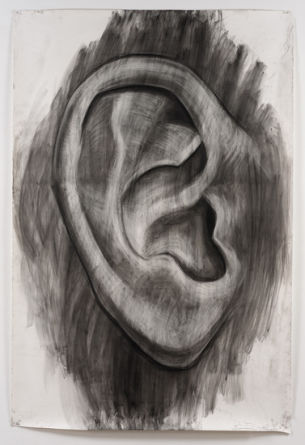 Large Ear, 2012, Pencil on paper, 77.5
