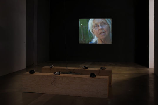 Sandra, Installation view, 2010