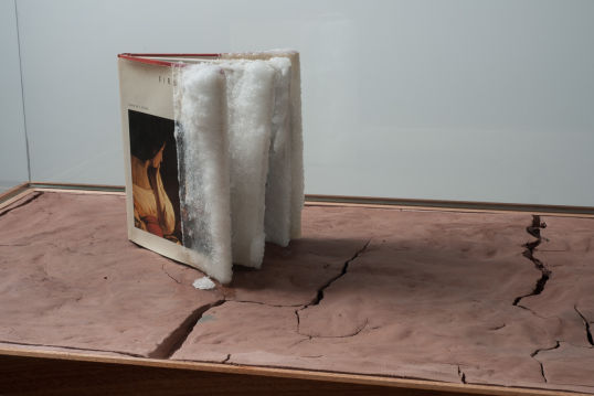 Orpheum Returns- Fires Creation, 2010, Glass vitrine, wood shelf, clay, science book, sugar, 57 x 59 x 25, detail