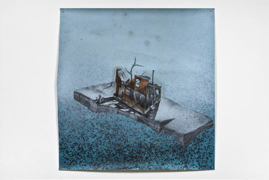 Blind Pig #1, 2010, Acrylic, graphite on paper, 59