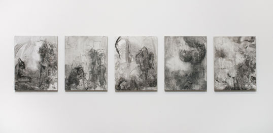 "2010, India ink on gesso, on linen, on board, 11"" x 14"" each, Installation view"