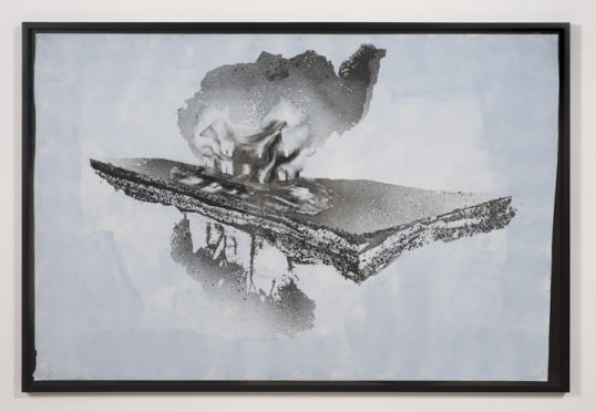 American Natural History, 2009, Acrylic, graphite on paper, 60