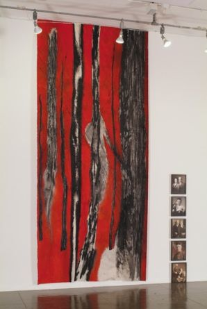 Installation View, 2008, ArtPace San Antonio
