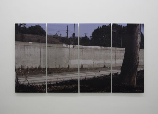 "What if walls made things greener on the other side?, 2007, Lenticular print mounted on Diebond, Edition of 3 + 2 AP, 48"" x 96"" (4 panels, each 48"" x 24"")"