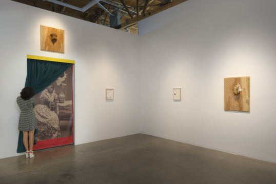 """Forest,"" Installation View"