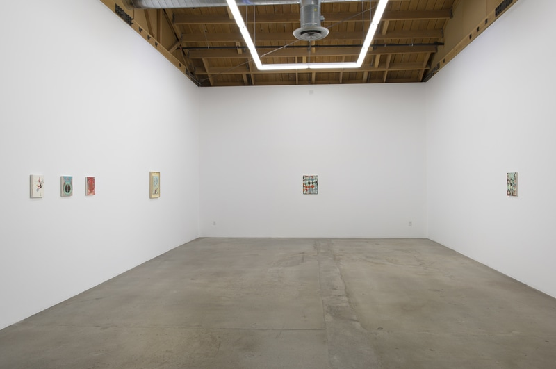 Screen Gems, 2015, Installation view, SVLAP Solo Show, February 21 - April 4, 2015; Photo credit: Robert Wedemeyer