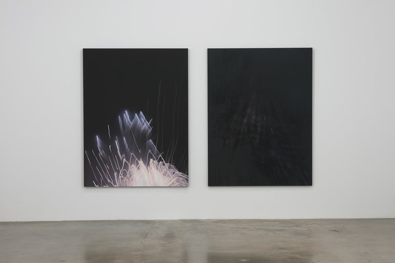 Whitney Bedford,, March 1 - April 12, 2014, Installation view, Susanne Vielmetter Los Angeles Projects; Photo credit: Robert Wedemeyer