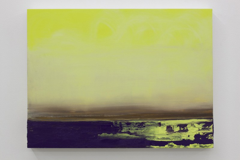 Untitled (Yellow Swell), 2011, Ink and oil on panel, 18