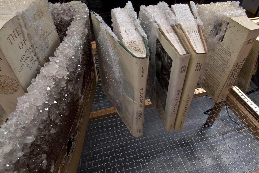My Father Jim, 2010, Sugar crystals, books, chicken wire, card board, wood, string and glass., 60