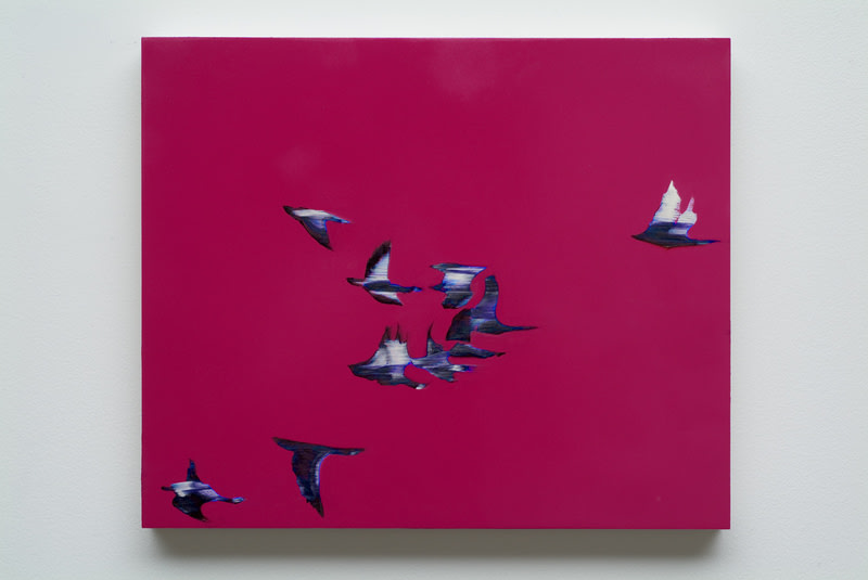 Untitled (Pink Sky Birds), 2008, Ink and oil on panel, 15