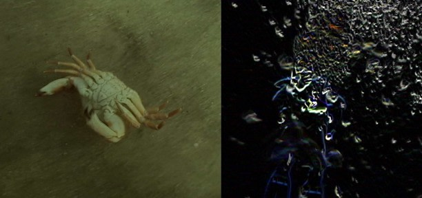 The Underwater Project: Turning Myself Into Music, 2004, Video, 51 minutes, 3 channels (detail)
