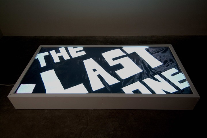 """The Last One Lightbox, 2007, C-Print, lightbox, 8"" x 72 ¼"" x 36"""