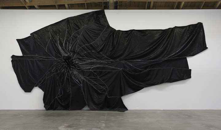 "Succulent, 2010, Vinyl and thread, 14' H x 27' 6"" W, Photo cred: Robert Wedemeyer"