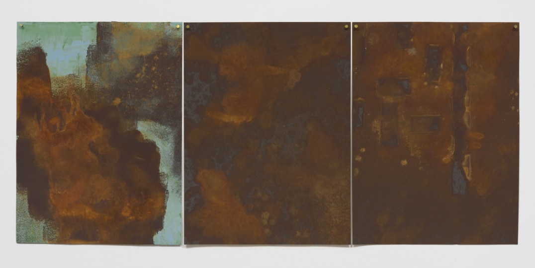 """Verdigris Hiding"", 2015, Rust on paper, 24"" H x 54"" W, Photo credit: Robert Wedemeyer"