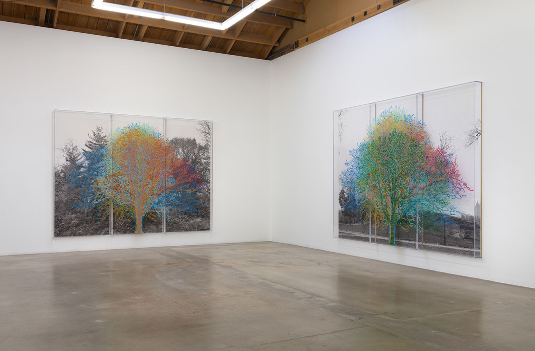 Installation View, Photo cred: Robert Wedemeyer