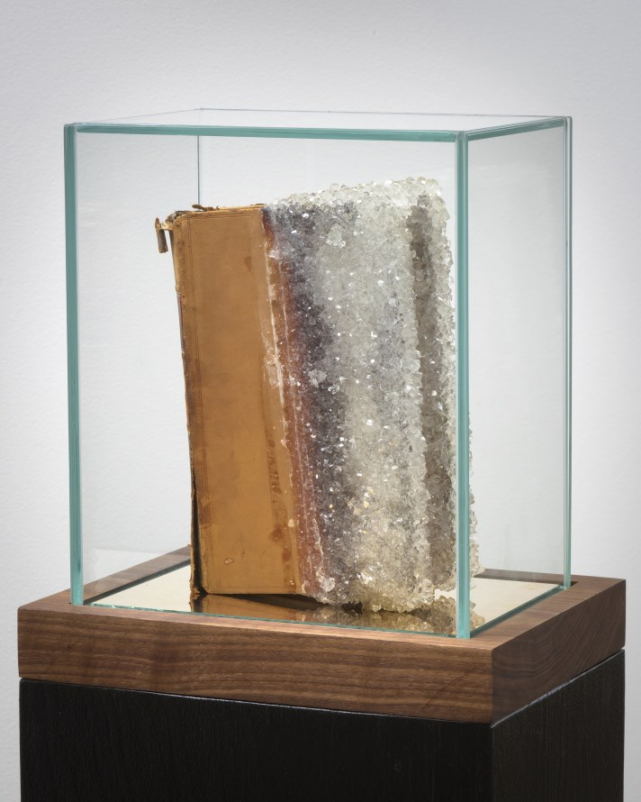 "Commentaries, 2017, Book, crystalized sugar/glass, mirror, pedestal, 51.25 x 9.5 x 12.5"" [HxWxD], Photo credit: Robert Wedemeyer"