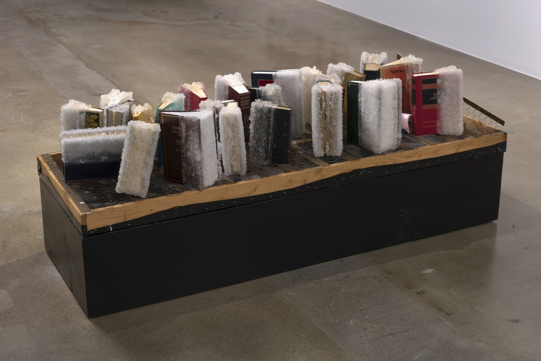 "False Equivalencies, 2017, Books, crystallized sugar, wood, chicken wire, plastic sheet, 28 x 24.5 x 13.5"" [HxWxD], Photo credit: Robert Wedemeyer"