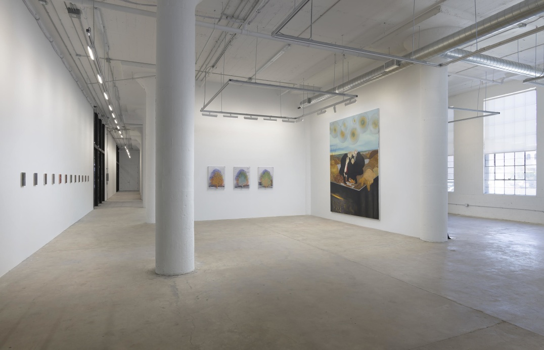 : Installation view, Inaugural Exhibition, Photo credit: Robert Wedemeyero