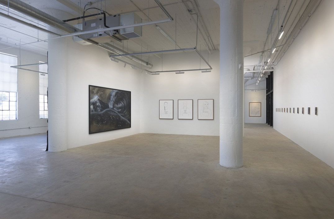 : Installation view, Inaugural Exhibition, Photo credit: Robert Wedemeyerr