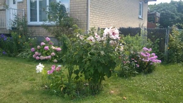 Le quartier des fleurs dans l'arrondissement Montréal-Nord.