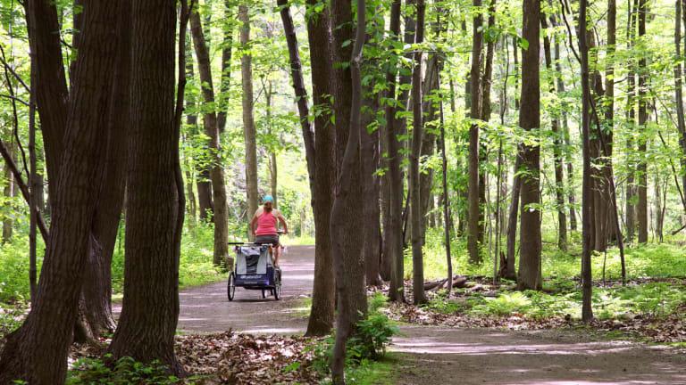 Comportement dans les parcs à Montréal - femme à vélo en forêt