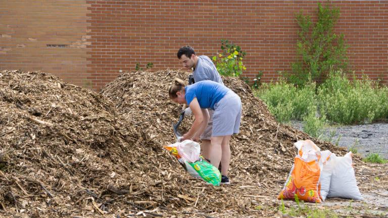 Citoyens lors d'une distribution de compost