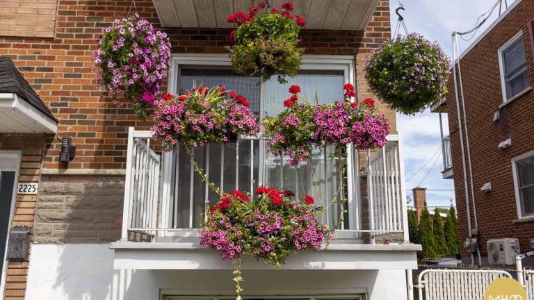 Gagnante de la catégorie Balcons et terrasses de l'édition 2021 du concours d'embellissement de MHM