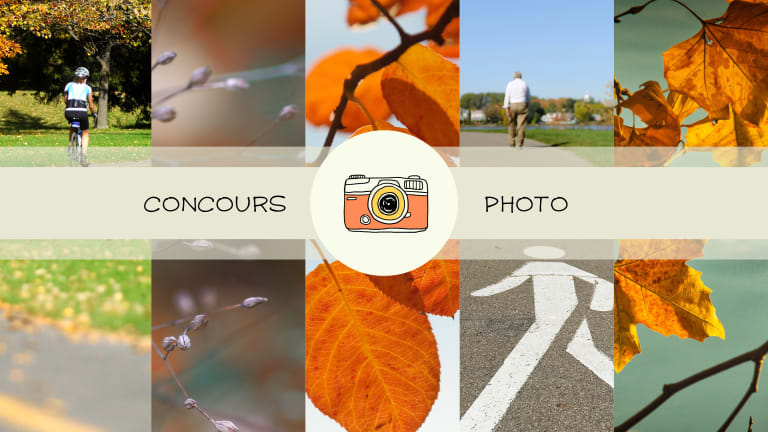 Compilation de photographies d'automne