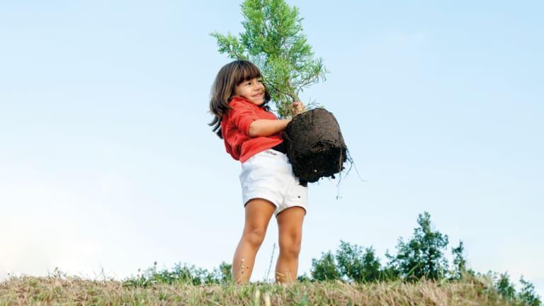 Jeune fille tient un arbre à planter