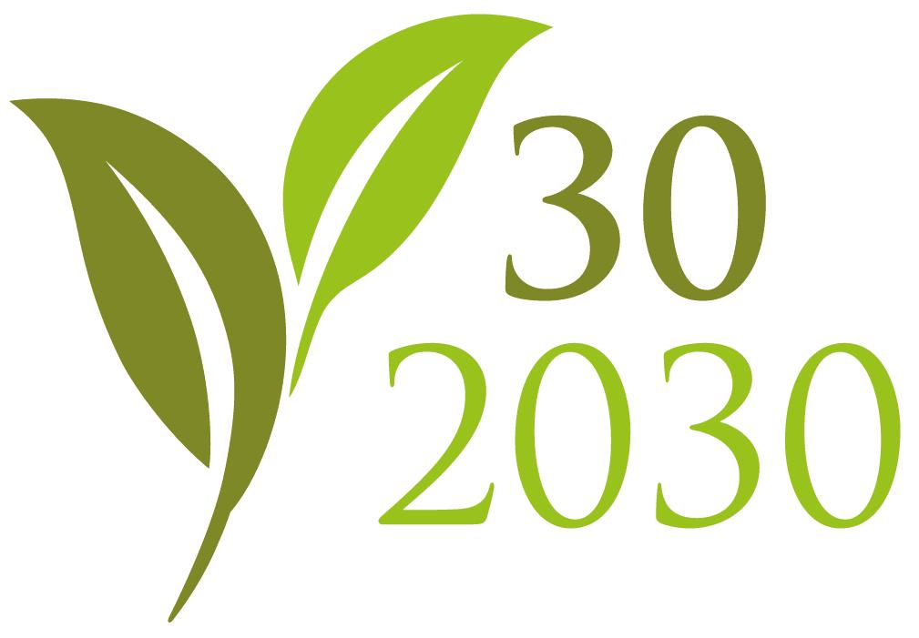 30-2030
