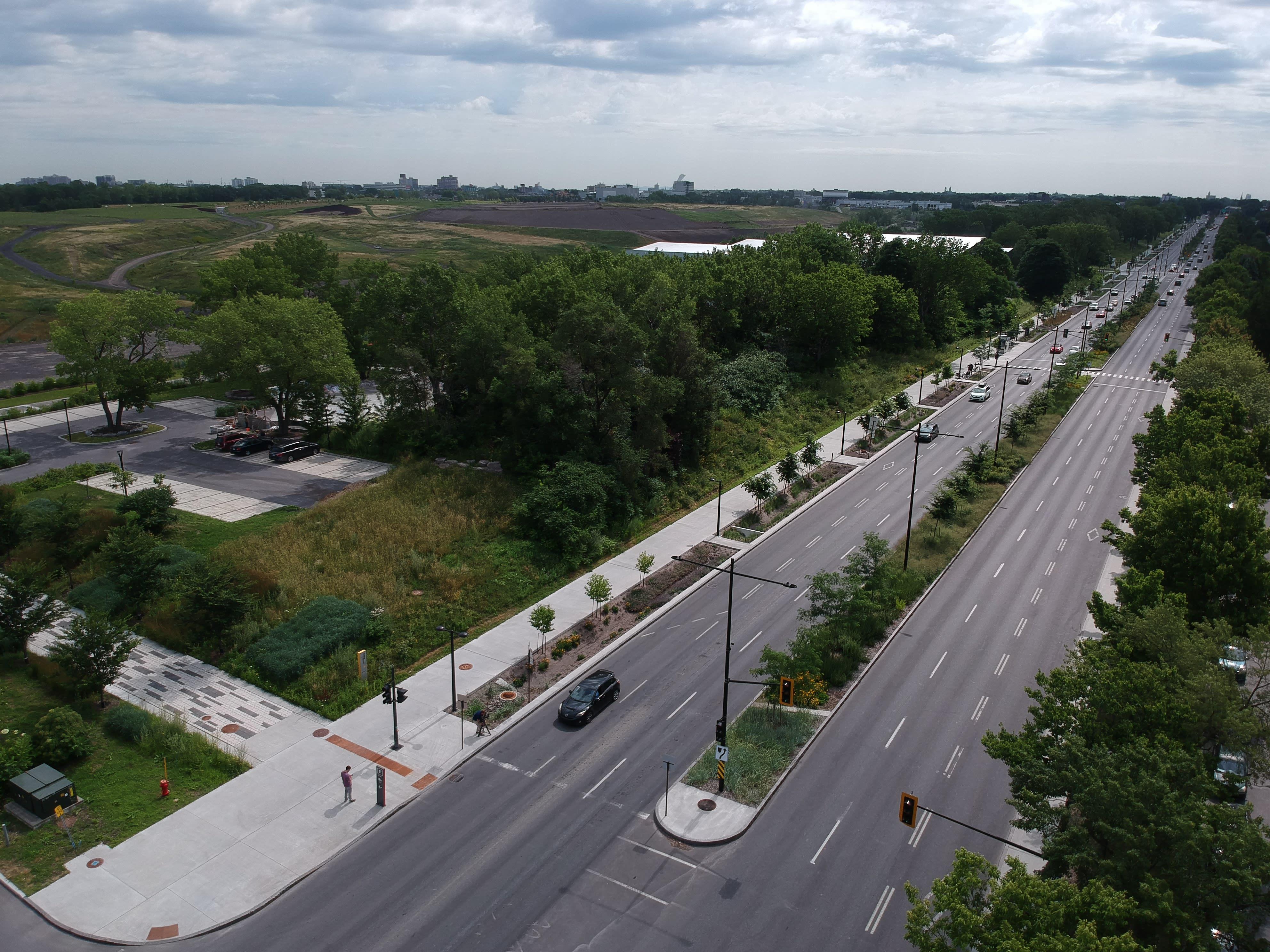Vue de l'avenue Papineau après le réaménagement, en 2019.--