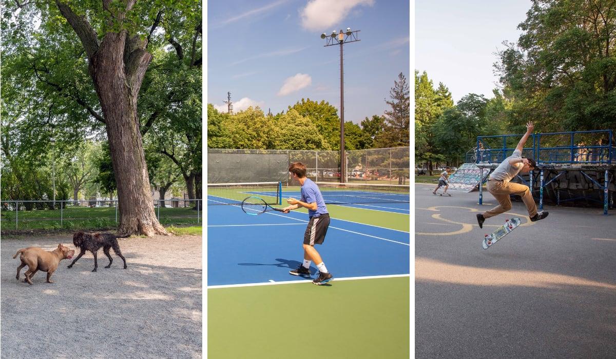 Image composée de photos prises au parc à chien ,sur un terrain de tennis et dans un skateparc.