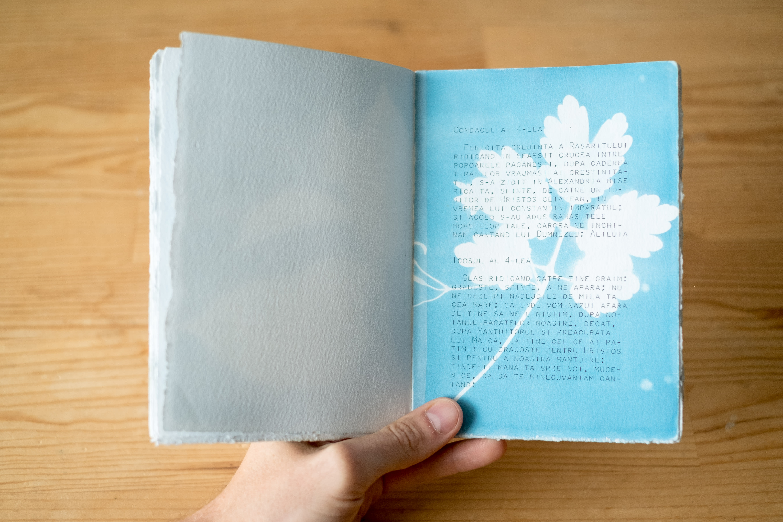 Épreuve de cyanotype sur papier