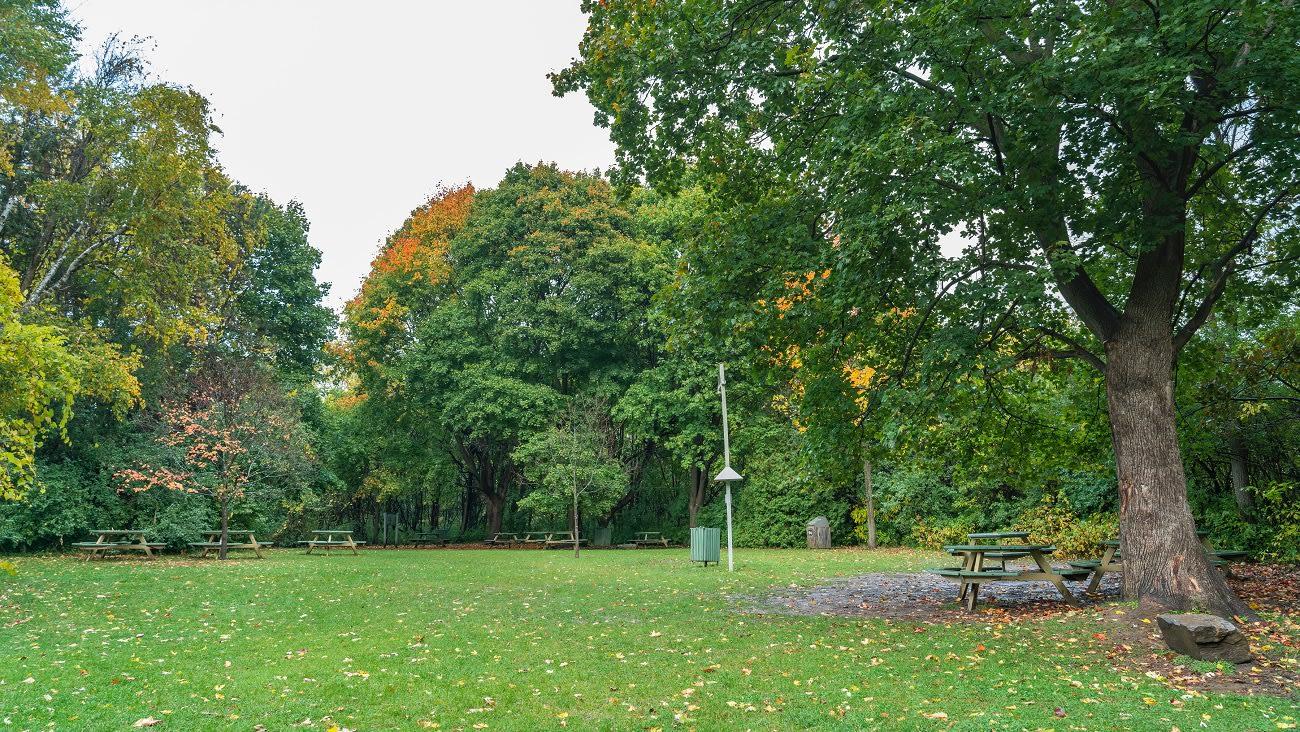 Aire de pique-nique centrale à louer, au parc-nature du Bois-de-Liesse.
