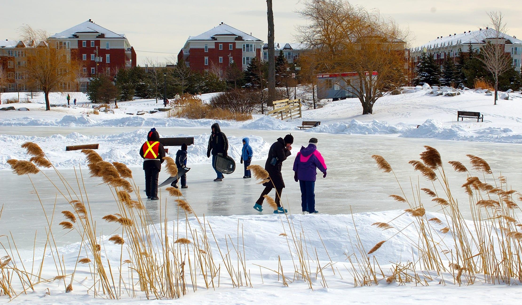 People skating in Jarry park