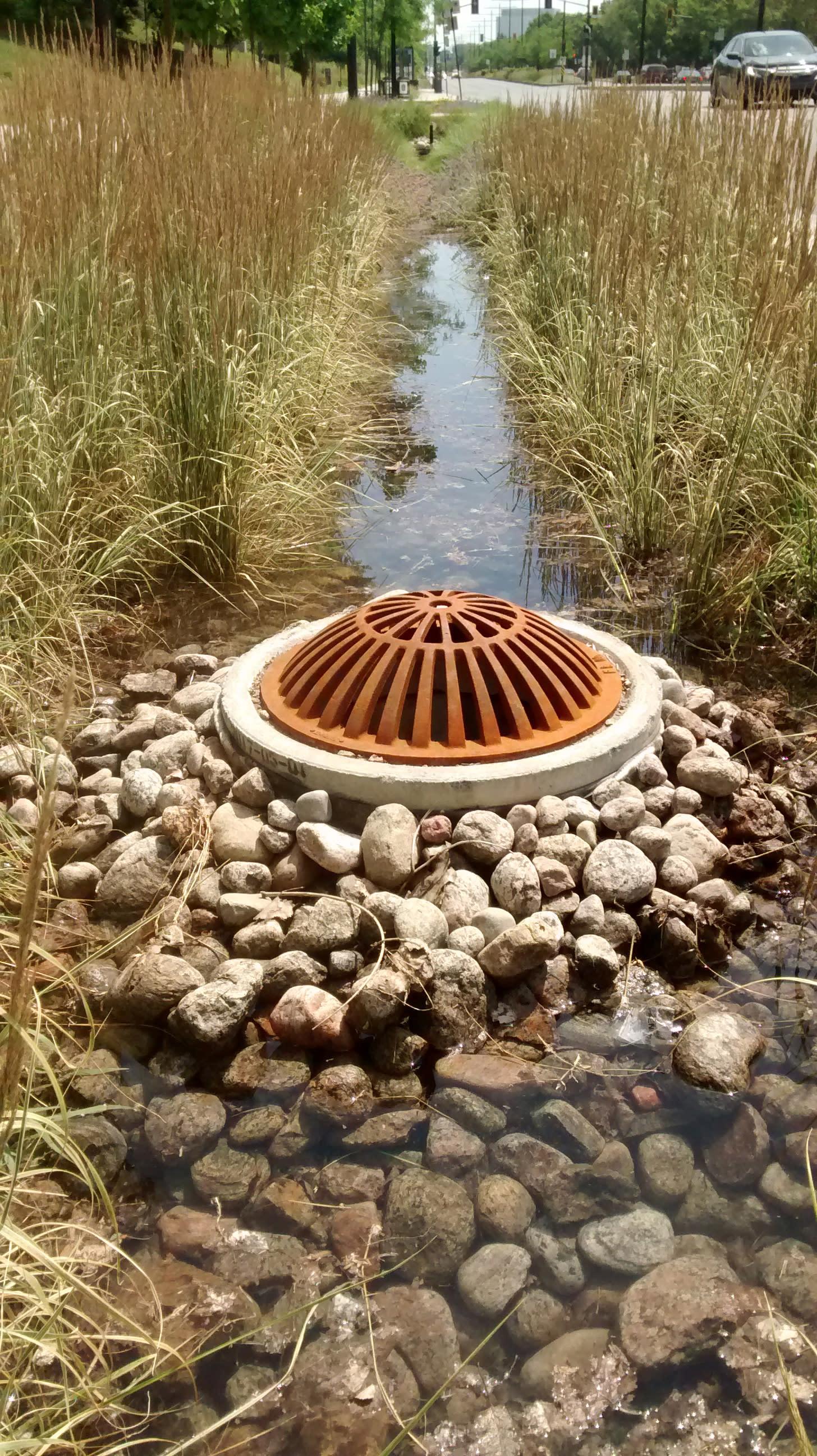 Un bassin de drainage inondé sur l'avenue Papineau