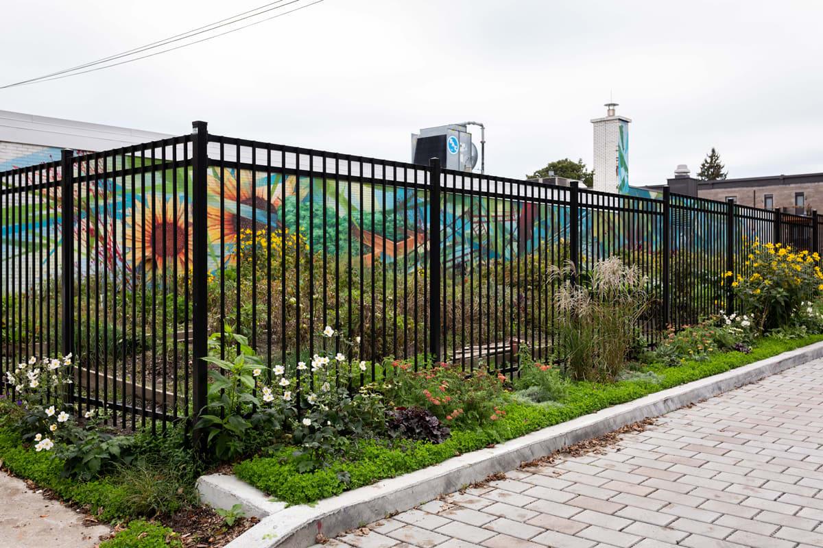 Vue d'un jardin communautaire.