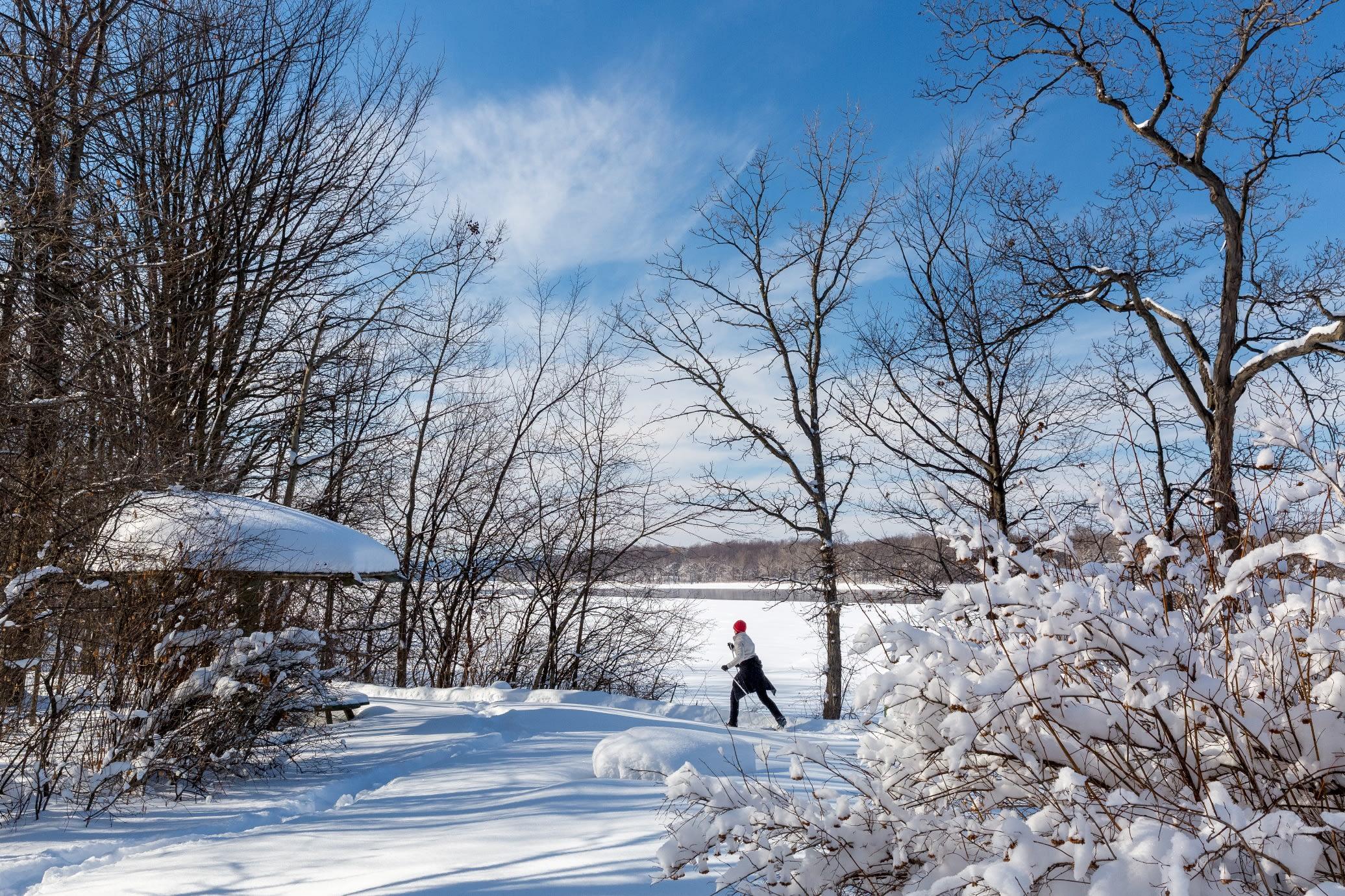 Ski de fond dans un parc-nature