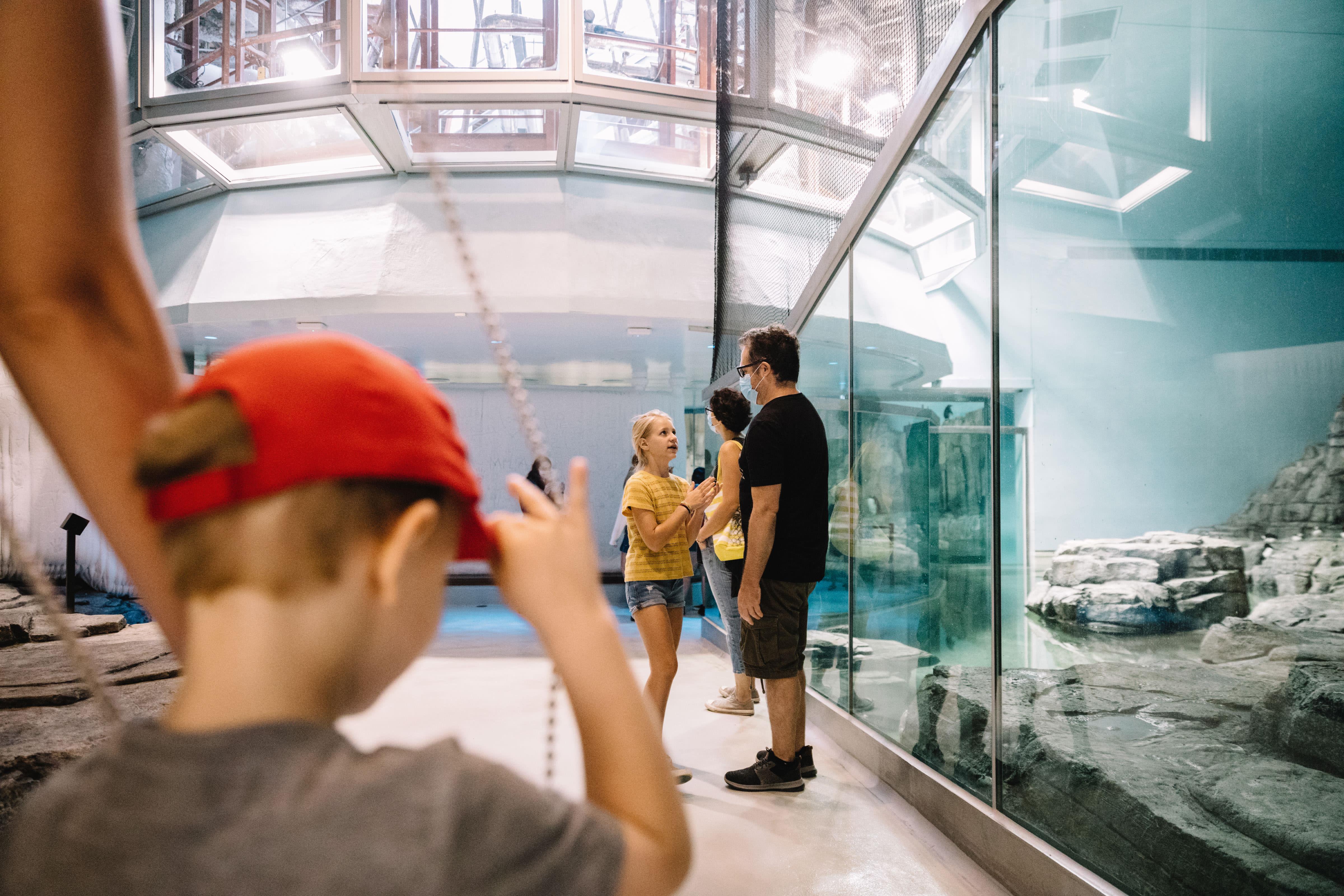 Visite en primeur du Biodôme.