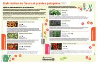 Fleurs et plantes potagères distribuées à Ahuntsic-Cartierville