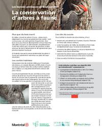La conservation d'arbres à faune