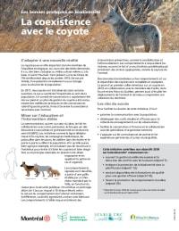 La coexistence avec le coyote
