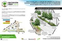 Travaux Laurentien-Lachapelle - Projet pilote fosses de plantation