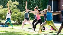 Cours de yoga gratuit au parc Médéric-Martin