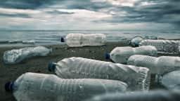 Le plastique : problèmes et solutions