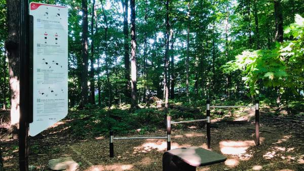 Parcours de TrekFit dans Saint-Charles à Pierrefonds-Roxboro.