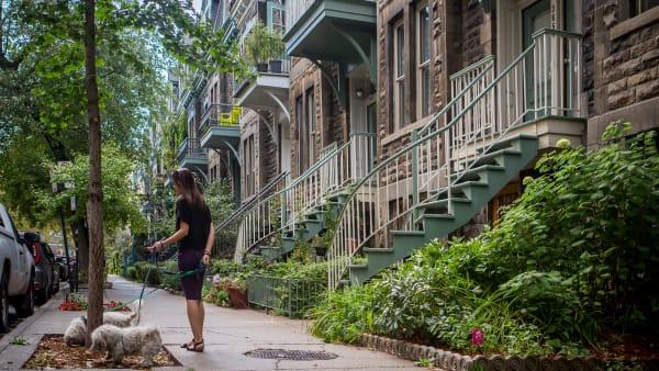 Quartier de Milton-Parc dans l'arrondissement du Plateau-Mont-Royal à Montréal.