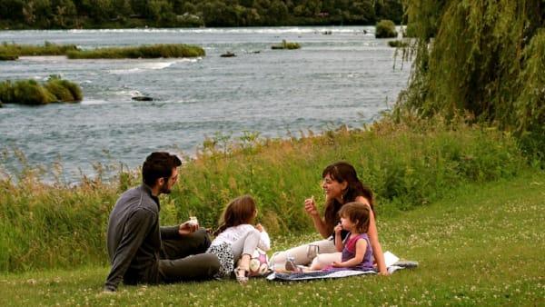 Une famille qui pique-nique dans un parc